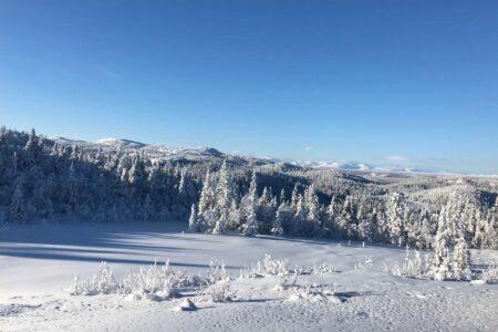 Dokkendammen hyttetomter, Søndre Fjellstølen, feat img