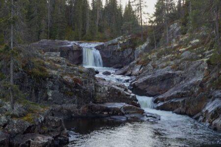 Fønhus-stien og Kvervilljuvet, Hølera, turbeskrivelse
