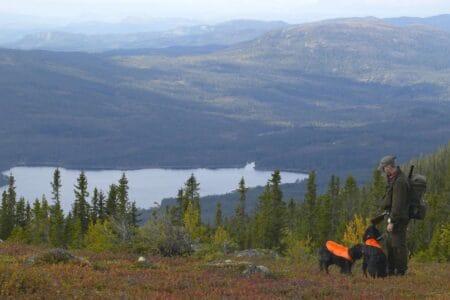 Hyttetomter i Hedalen og Vassfaret - fra Hedda