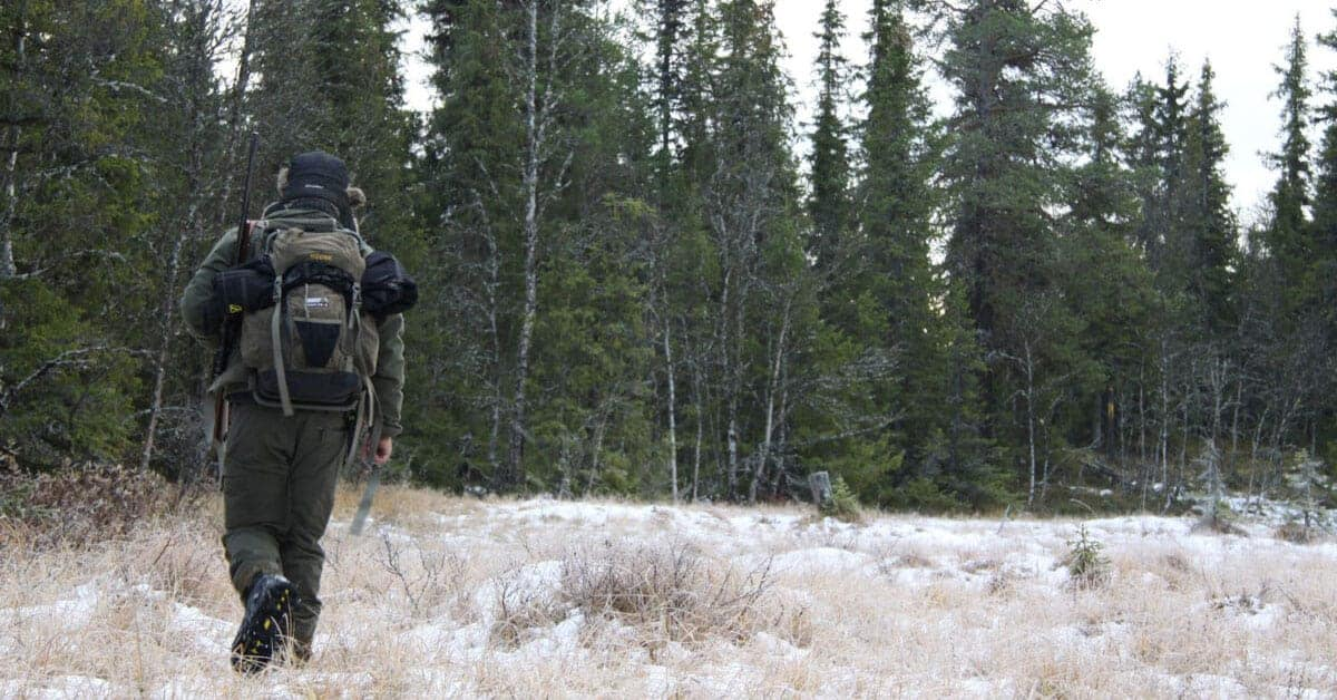 Jakt i Valdres