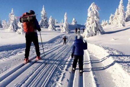 Hyttetomter ved Dokkendammen, Søndre Fjellstølen