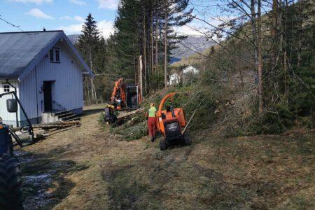 Sørbøen Skogservice AS