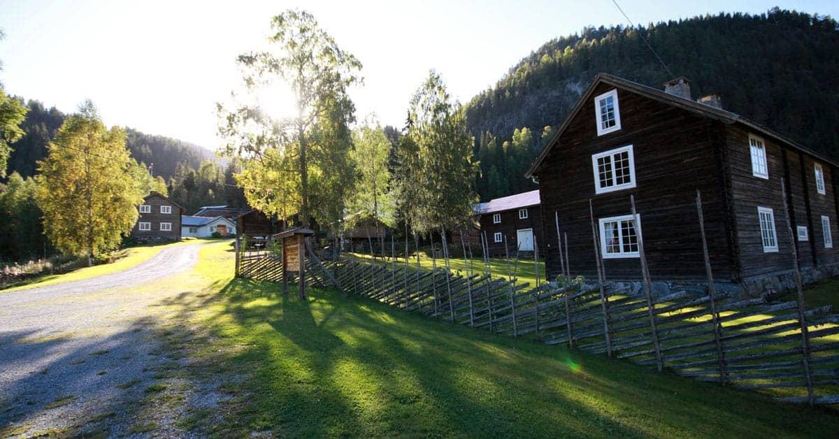 Bagn Bygdesamling, Rune Larheim